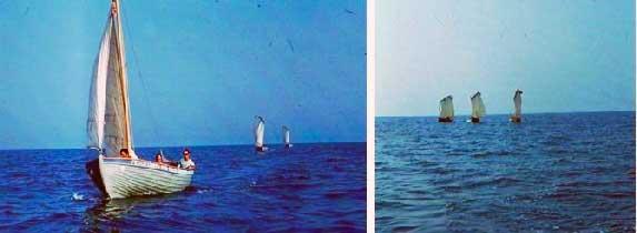 В Чёрном море. Июль 1977 года.
